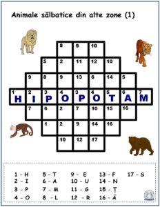 Cuvinte codificate - Animale sălbatice din alte zone