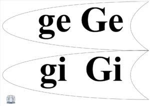 Literele și grupurile de litere - Petală ge, gi