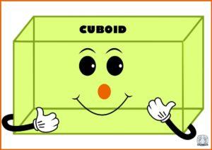 Figuri și corpuri geometrice-Cuboid